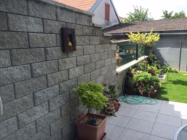 betonovy-mur-6