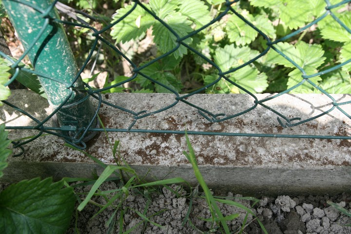 betonovy-mur-7