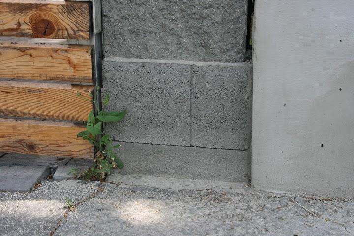betonovy-mur-8