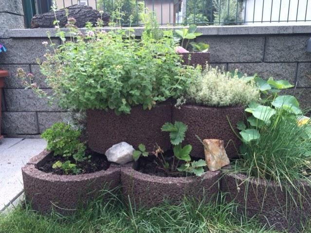 bylinkova-zahrada-5