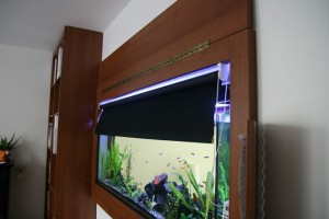 vstavane-akvarium-11