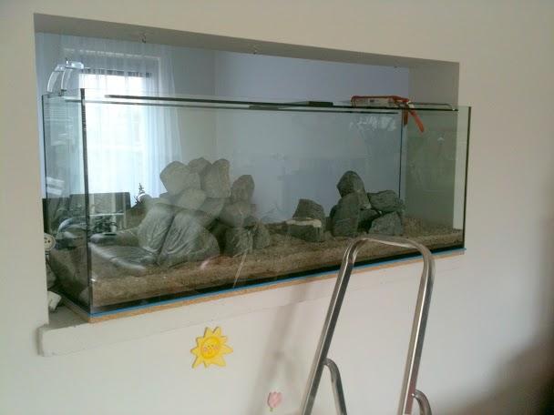 vstavane-akvarium-4