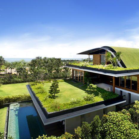zelene-strechy-3