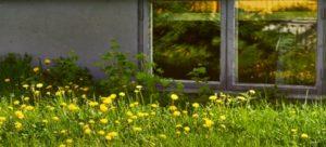 pivničné okná