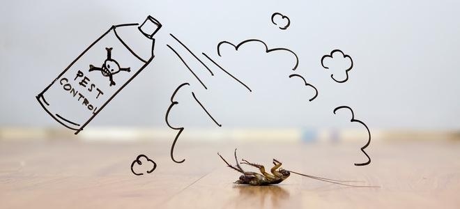 zbaviť sa hmyzu prírodnou cestou