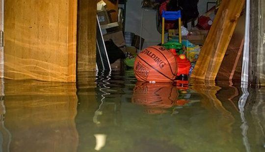 zaplavená pivnica