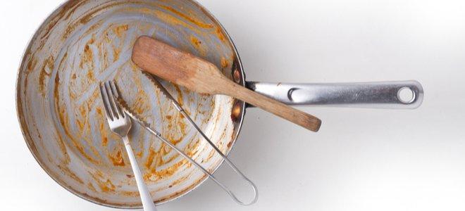 problémy so škodcami v kuchyni