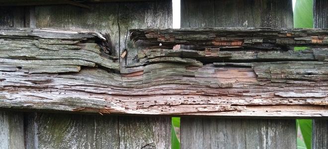 drevený plot